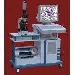 Pathological Image analysis system